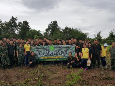 นักศึกษาวิชาทหารปลูกป่า